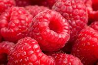 Ripe rasberry background. Close up macro shot of raspberries